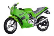 Мотоцикл Kawasaki Ninja 600R, зеленый (1/18)
